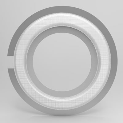 The front view of the annular shape filter disc.
